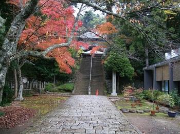 紅葉と本堂.jpg