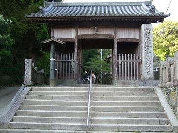 藤井寺山門.jpg